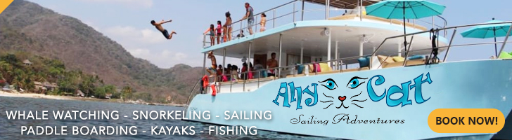 Ally Cat Sailing Tours Banner
