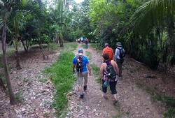 Hiking through the jungle in Sayulita