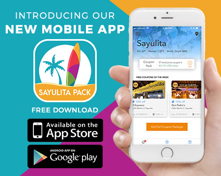 sayulita businesses