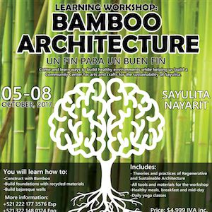 Help Build a New Sayulita Community Center by Supporting Bamboo Architecture