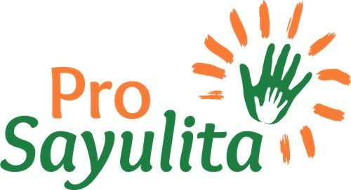 Pro Sayulita General Public Meeting Minutes: Nov. 30, 2017